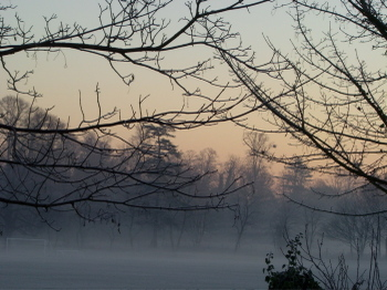 Frostyberkshiremorning